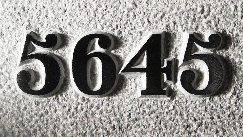5614_ZW